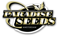 Paradise Seeds 2018