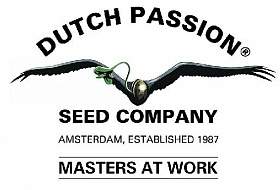 Dutch Passion 2018